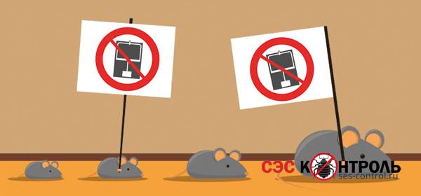myshi fact - Как узнать есть ли в холодильнике мышь